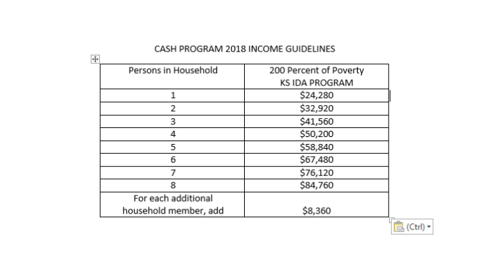 2018 income guidelines